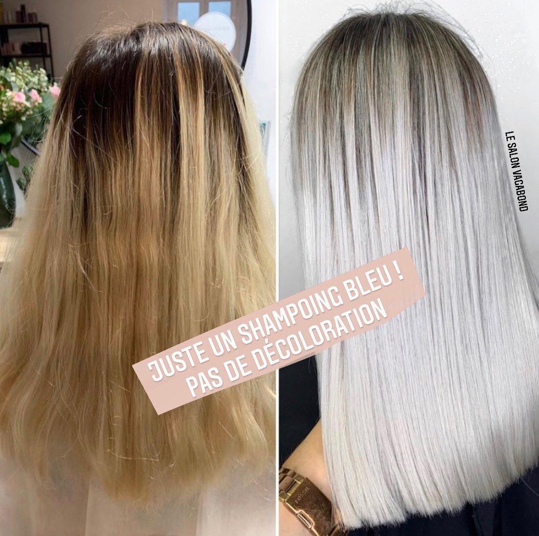 Entretien du blond polaire